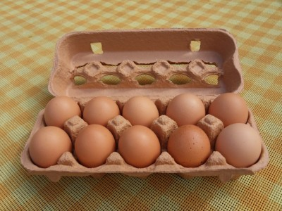carton_of_10_eggs